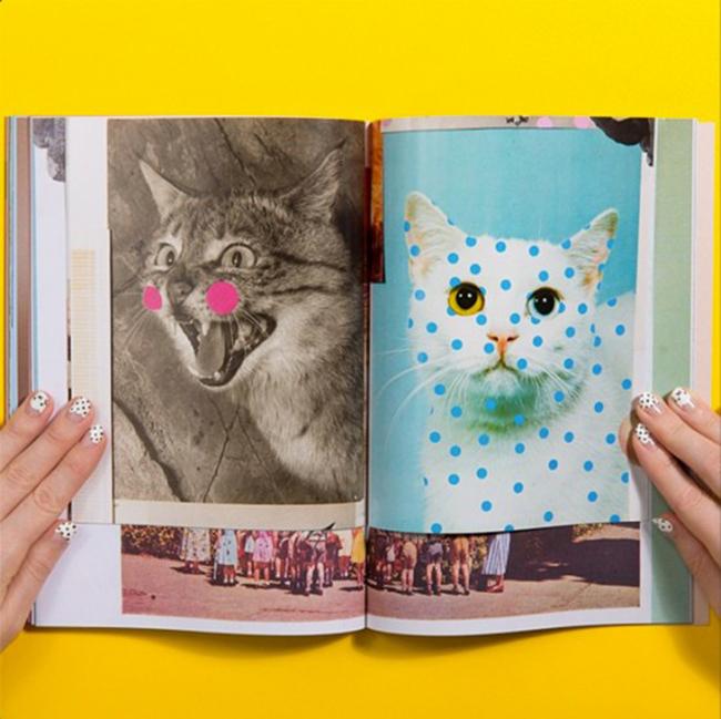 280714-cat-people-revista-3-550x549